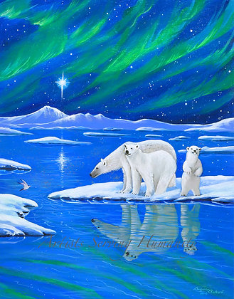 Northern Lights - Polar Bears and Arctic Tern