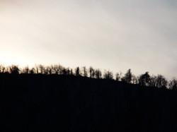Vrh Kapele