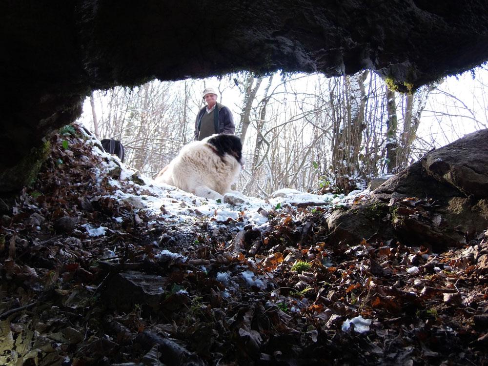 Šušnjareva pećina