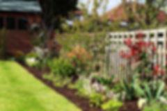 Back garden design & planting in Worcester Park