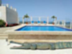 hotel playa el yaque.jpg