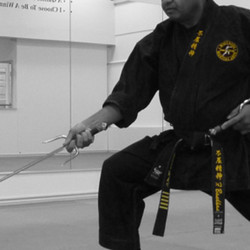 Teen & Adult Karate