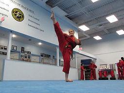 Wellness Martial Arts Karate Brampton
