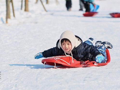 Seoul-Snow Sledding, Santa Claus Village and Strawberry-picking One-Day Tour