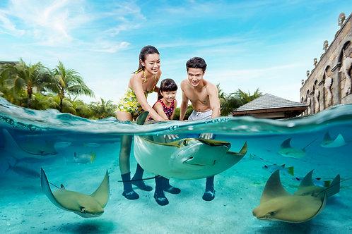 新加坡-水上探險樂園電子門票