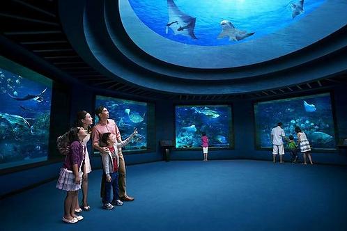 新加坡-名勝世界 S.E.A 海洋館門票