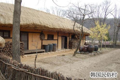 下午遊 2 下午 韓國民俗村遊
