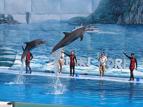 泰國-曼谷野生動物世界與海洋公園入場