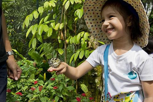新加坡-聖淘沙島蝴蝶園與昆蟲王國入場門票