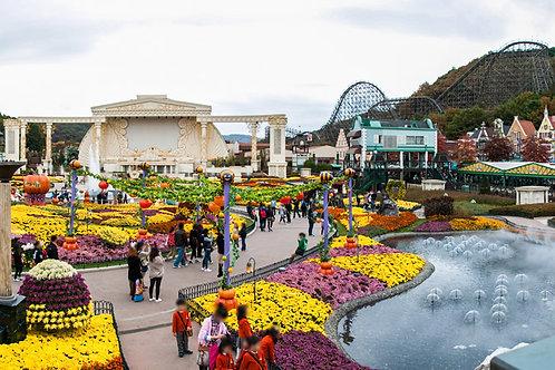 韓國愛寶樂園 Everland