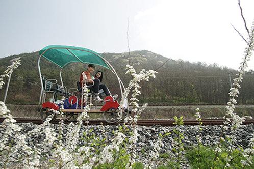 Seoul-Plum Flower Festival , Hanok & Maisan Temple Two-Days Tour
