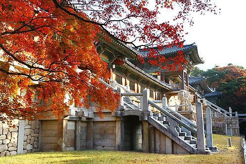 Busan-Gyeongju Old Town One-Day Tour