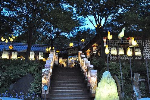 韓國-夜遊香草島樂園一天團