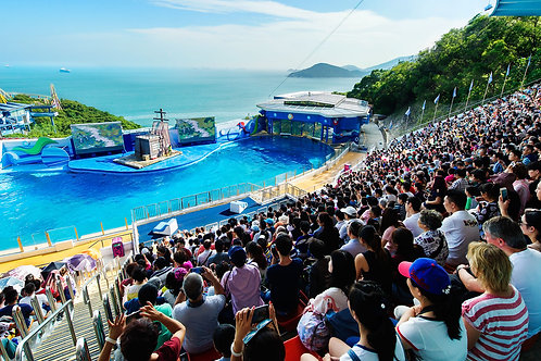 Hong Kong- Ocean Park Entry Ticket with Shuttle