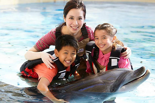 香港 - 海洋公園親親海洋明星 Hong Kong - Ocean Park Dolphin Encounter