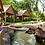 Thumbnail: 新加坡-與野生動物共進早餐