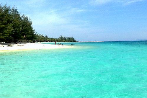 Sabah-Borneo Reef World Combo (Adult)