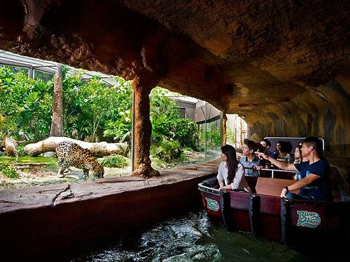 新加坡河川生態園門票 + 河川生態遊船