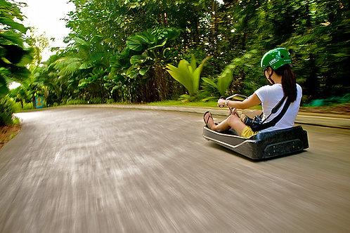新加坡-聖淘沙天際線斜坡滑車+空中吊椅(各一次)