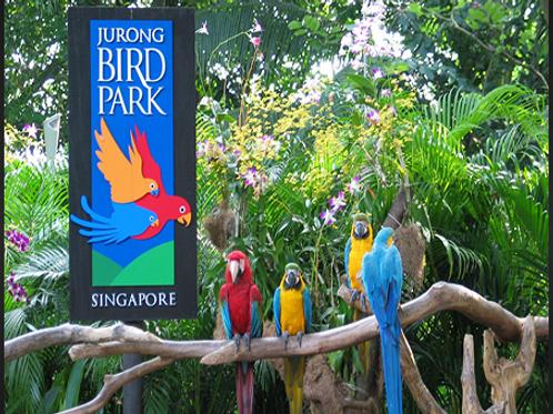 裕廊飛禽公園 (門票+Panorail Ride電車) Jurong Birdpark
