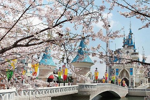 首爾樂天世界主題公園門票 Seoul - Lotte World