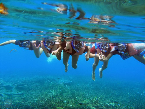 Sabah- Day Trip to Snorkel and Jungle Trek at Pulau Tiga (Adult)