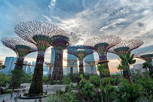 新加坡-濱海灣花園門票