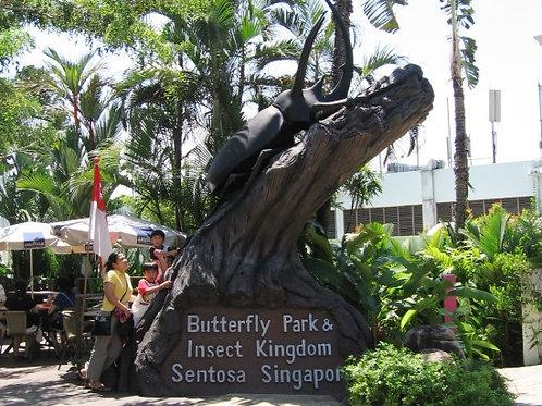 蝴蝶公園與昆蟲王國