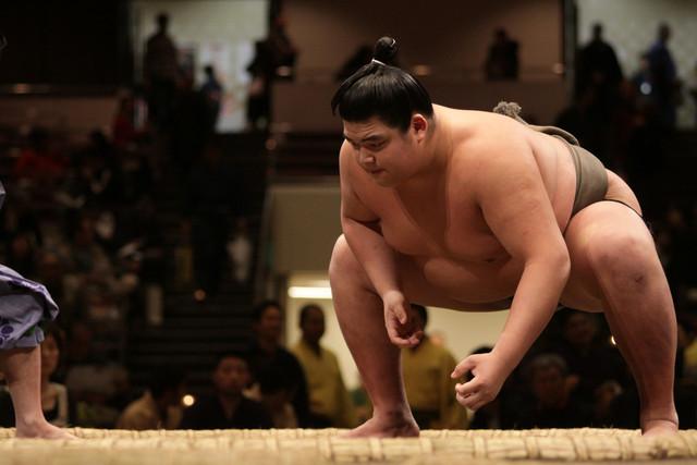 The Sumo-Wrestler Diet
