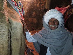 Our camel knight