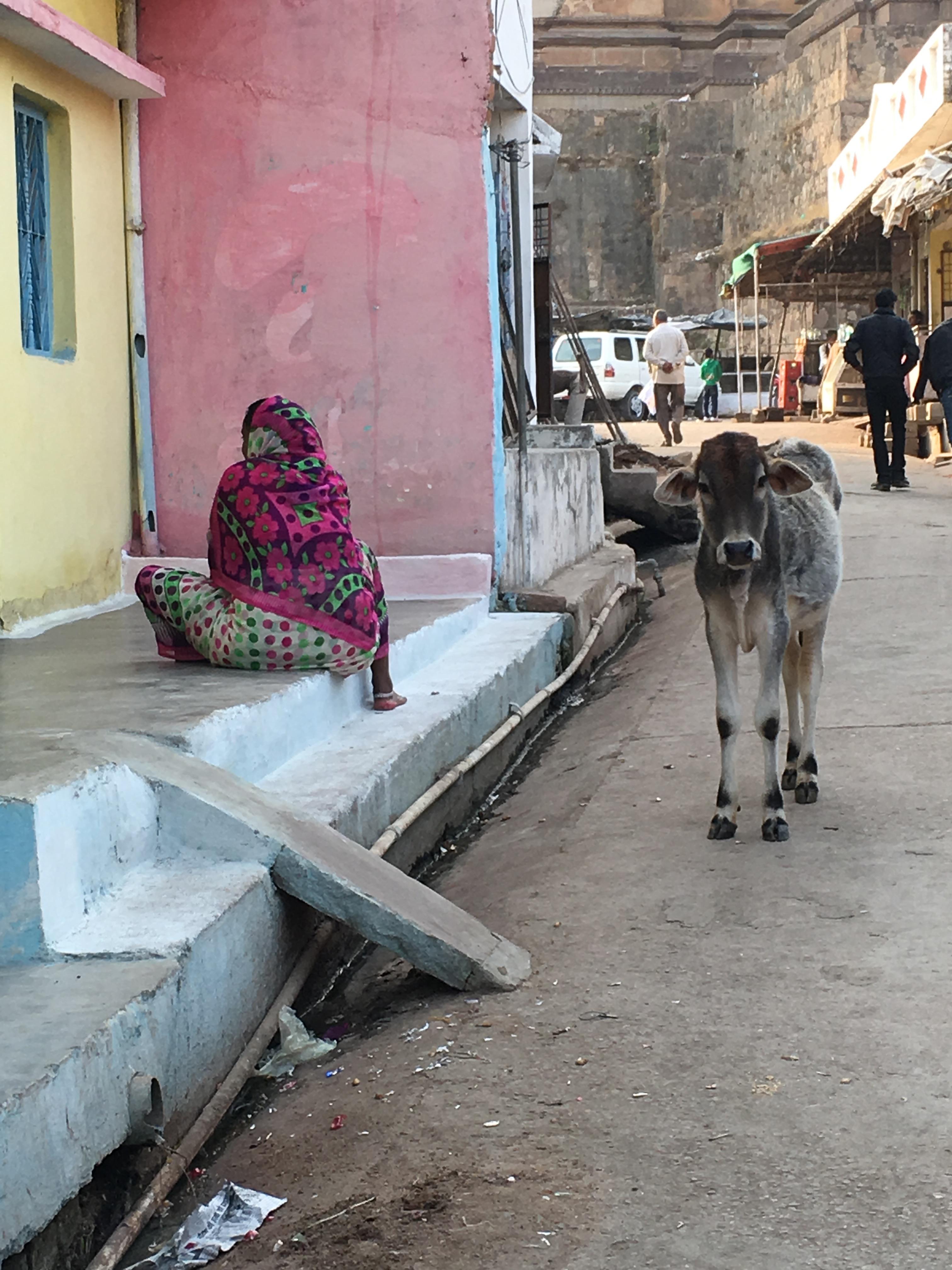 Woman and calf