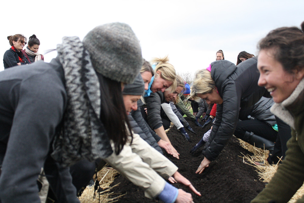 Planting Potatoes at My Spring Root to Rise Retreat