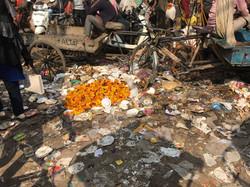 marigolds in trash