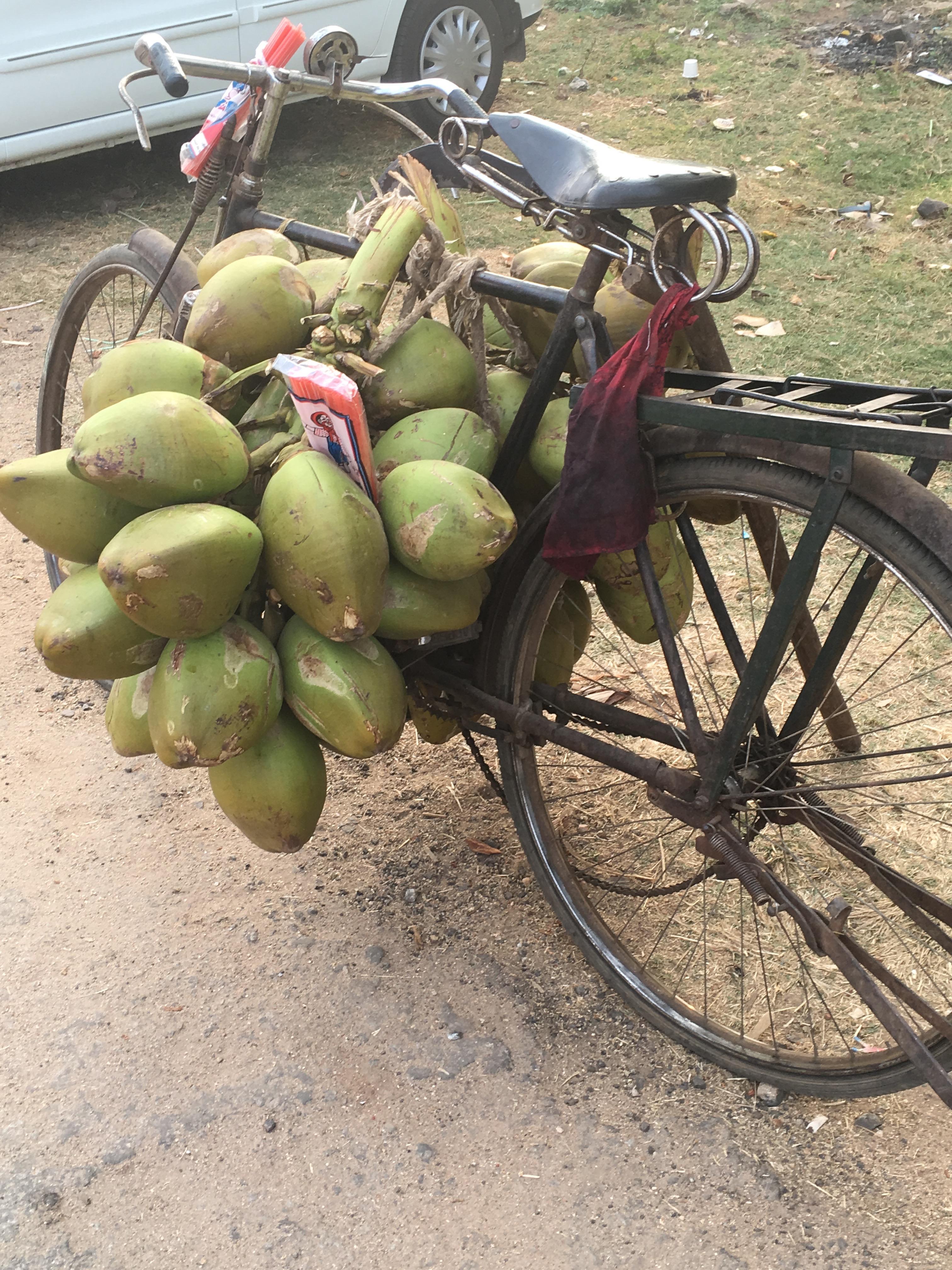 Coconut ride