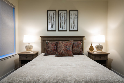 Aspen Room 4