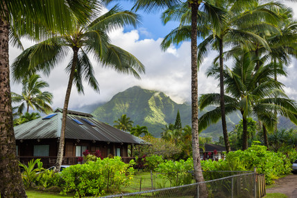 Island Backdrop