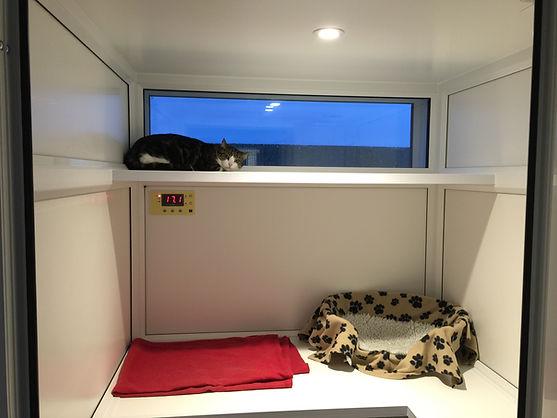 Viewing Shelf