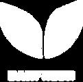 DanFresh_logo_hvid.png