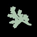 Bloem 2 - groen.png