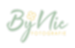 ByNic_Logo_Vrijstaand website.png