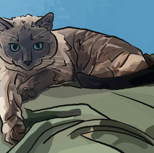 Digital Pet Portrait   Athena