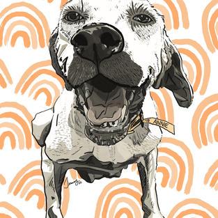 Digital Pet Portrait   Annie (In Memory)