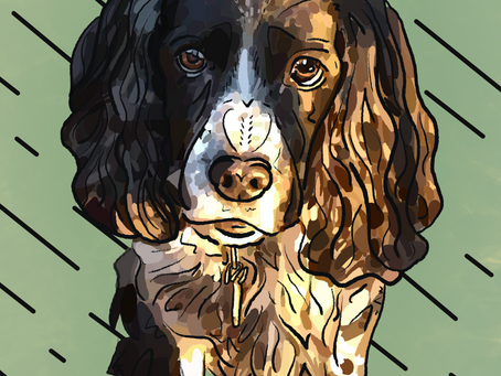 Portrait Alert! Digital Painting of Bailey Gifted In Memoriam