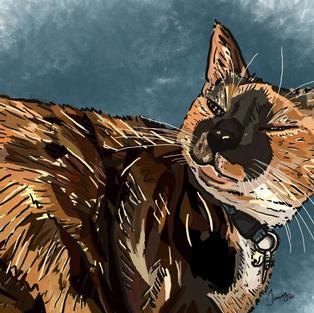 Digital Pet Portrait   Schatze