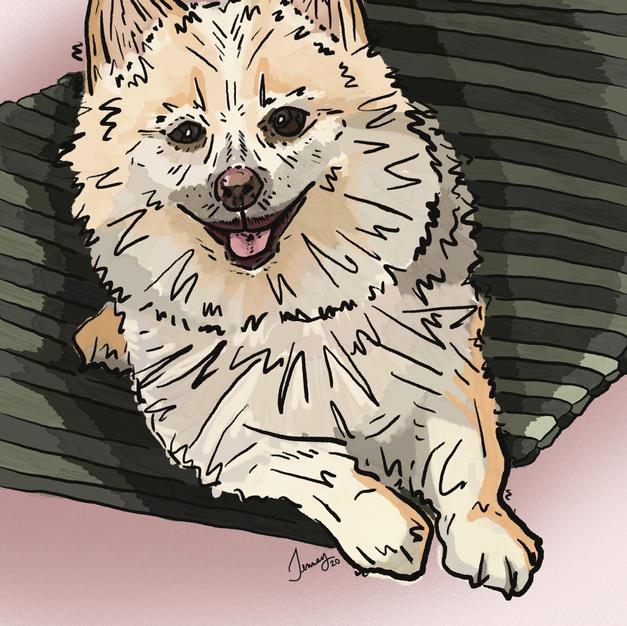 Digital Pet Portrait | Benny