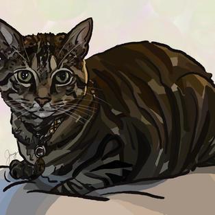 Digital Pet Portrait   Triton