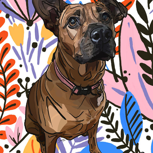 Digital Pet Portrait | Mattie