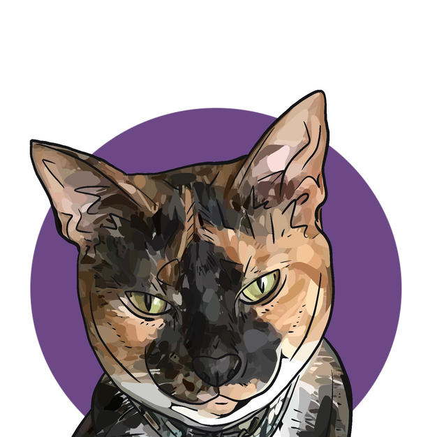 Digital Pet Portrait | Schatze