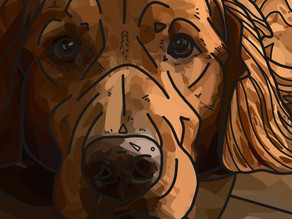 Portrait Alert! Digital Painting of Cooper