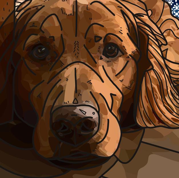 Digital Pet Portrait | Cooper